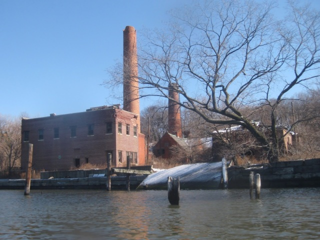 North_Brother_Island_Old_Plant